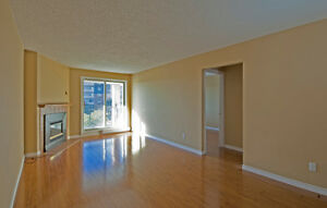 Beautiful move-in ready condo in White Oaks London Ontario image 8