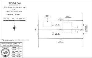 2 Approved Skinny Lots-House with Legal Basement Suit-Allendale