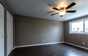 New Price! Renovated 3 bedroom south end London Ontario image 5