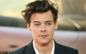 Harry Styles - PLATINUMS in Section 119 / Row 12 - MUST SELL!