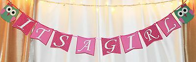 its a girl baby shower pink and aqua owl, animal hanging banner decoration](Baby Shower Owl Banner)