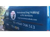 Professional dog walking and pet services. fully insured, DBS checked, and registered with narps.