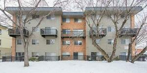 *MOVE IN NOW~DON'T PAY TILL MAY* 2 Level 2 Bdrm by Kingsway~186 Edmonton Edmonton Area image 16