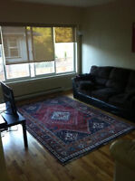 Bright Fernwood apt to share with female roomie (utilities incl)