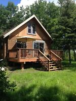 Lake Winnipeg Log Cabin - Waterfront