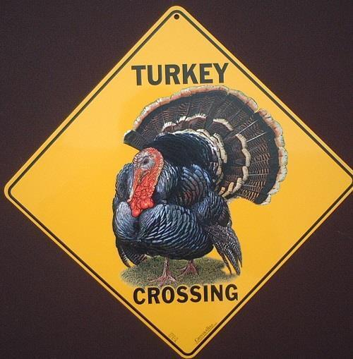 TURKEY CROSSING SIGN 16 1/2 by 16 1/2 NEW  decor birds  picture home signs art
