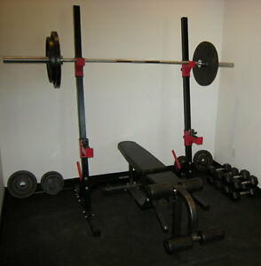 Squat rack, bench, olympic bar, weights + dumbells