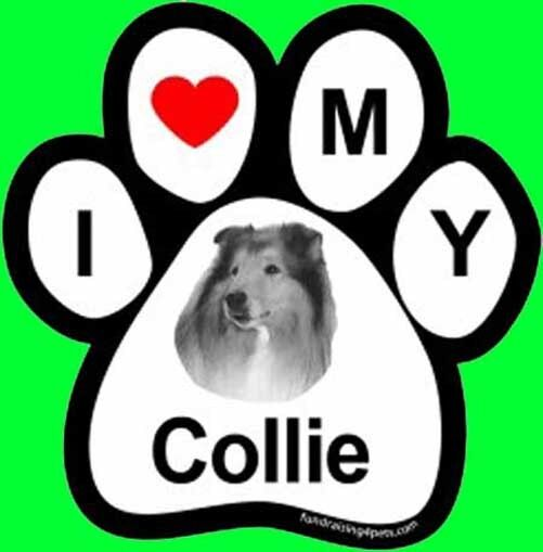 I LOVE  3 MY COLLIE - PAW MAGNET,4 Dog Cat Pet Rescue Charity