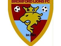 Bromford Lions U10s Football Club school years 4 & 5 looking to add to our team