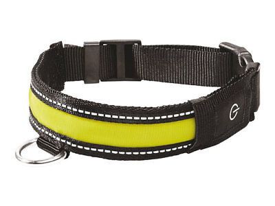 Branded Zoofari LED Collar or Glow Band, pet lovers choice german - Glow Led Products