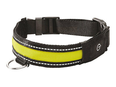 Branded Zoofari LED Collar or Glow Band, pet lovers choice german product. - Glow Led Products