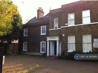 1 bedroom flat in Mattock Lane, London, W5 (1 bed)