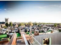 Hostess & Waiting Staff positions for The Varsity Hotel Roof Terrace Bar (immediate start)
