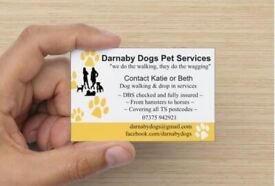 Darnaby Dogs Pet Services | Dog Walking | Day Care
