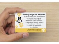 Darnaby Dogs Pet Services   Dog Walking   Day Care