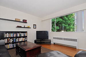 Large 1BD on Quiet Tree-Lined Street, in Trendy South Granville!