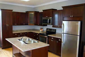 NEW KITCHEN CABINETS!  WE NOW OFFER FINANCING!