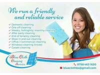 Blue Cloth Cleaning Service