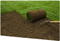 LANDSCAPING&NEW SOD STARTING AT$1.00 SQ FT  KENTUCKY BLUEGRASS