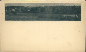 Mercersburg PA General View c1900 Postcard