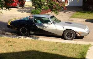 79 trans am limited edition 10th anniversary