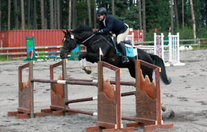 English jumping lessons
