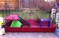 guinea pig rabbit cage