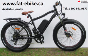 New Fat Ebike by Kador  quality-made, many upgrades, accessories