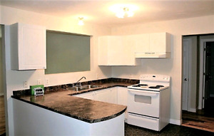 Awesome 3BR downtown apartment!
