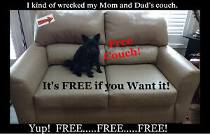 Beige Leather Couch - FREE!