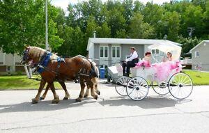 Pour un mariage qui sort de l'ordinnaire. Saguenay Saguenay-Lac-Saint-Jean image 1