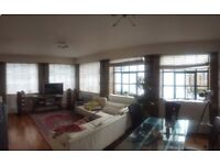 Double room to rent in BS1. Lovely flat with two lovely housemates.