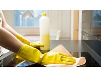 Professional - HOUSE - DOMESTIC - CLEANING - SERVICE