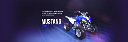 ATV, 250cc, Quad, Quad Bike, Quad 250cc, Crossfire
