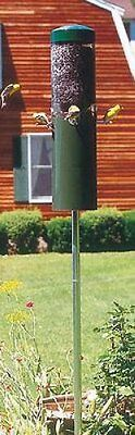 Birds Choice Squirrel Proof Bird Feeder With Built In Squirrel Baffle & Pole 431