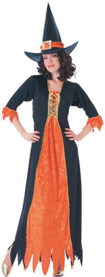 Adult Gothic Witch Standard Size Halloween Costume - Gothic Witch Halloween Costumes