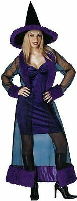 Sexy Purple Witch Diva costume Womens Adult Costume Standard Up to dress Size 10 Adult Witch Diva Costume
