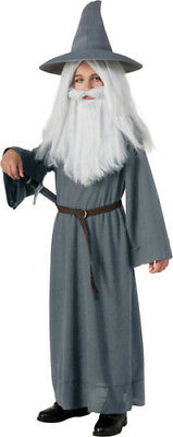 Child Gandalf Halloween Lord of the Rings Costume](Kids Lord Of The Rings Costumes)