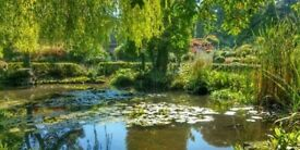 Welcome 2022 in Nature!(Walk Meditation,Forest Bathing,Connection Workshop)-Coombe Wood Gardens.