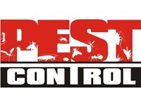 EXPERIENCED, CHEAP AND RELIABLE PEST CONTROL AND VERMIN CONTROL EXPERTS - RESIDENTIAL AND COMMERCIAL