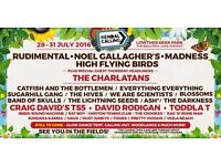 Volunteer at Kendal Calling Festival! Go for free without missing any of the festival!