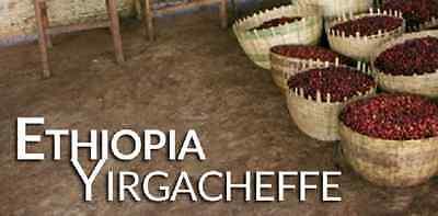 3 lbs Ethiopian Yirgacheffe Washed Grade 1 Fresh, Green/Raw Coffee Beans - Ethiopian Yirgacheffe Whole Bean