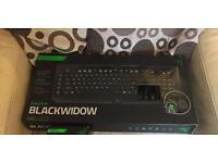 Razer Blackwidow mechanical keyboard