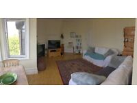 3 large rooms available in stunning, spacious flat