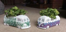 Unique Hand Painted Plant Pots For Sale £20 each includes plants
