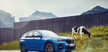 BMW X1 X1 xDrive25e Business Advantage