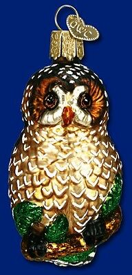 SPOTTED OWL OLD WORLD CHRISTMAS MOUTH BLOWN GLASS BIRD AVIARY ORNAMENT NWT 16052
