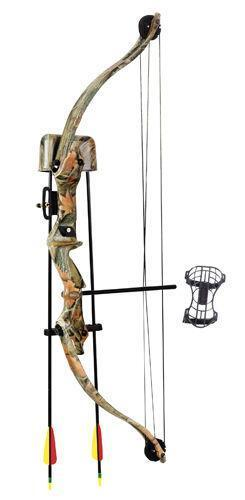 how to clean a compound bow
