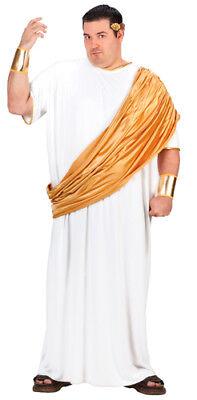 Big & Tall Hail Caesar Mens Roman Emperor Costume