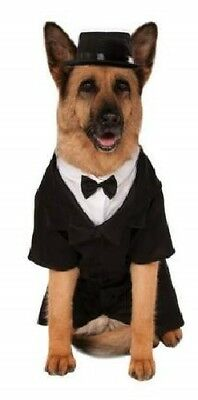 S-XXXL Groß Haustier Hund Katze Tuexdo Hochzeit Anzug Kostüm Kleid Outfit (Katze Kostüm Männlich)